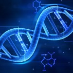What is DNA Activation?