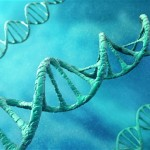 Chopra: Meditation and your DNA