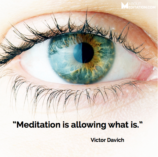 Meditation quote - allowing what is