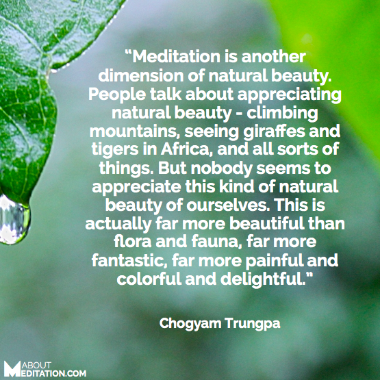meditation quotes - natural beauty