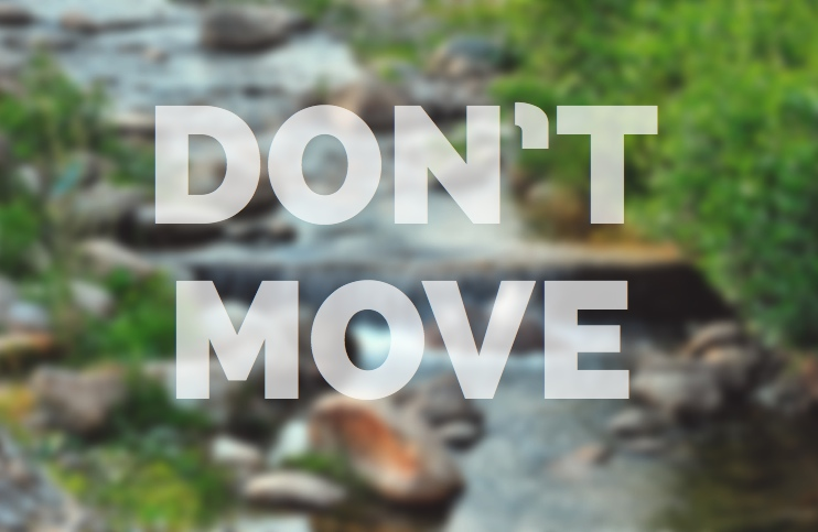 Don't move - meditation