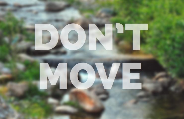 Don't move - meditation