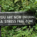 4 Mindfulness Tips To Reclaim Your Center & Ground Your Being