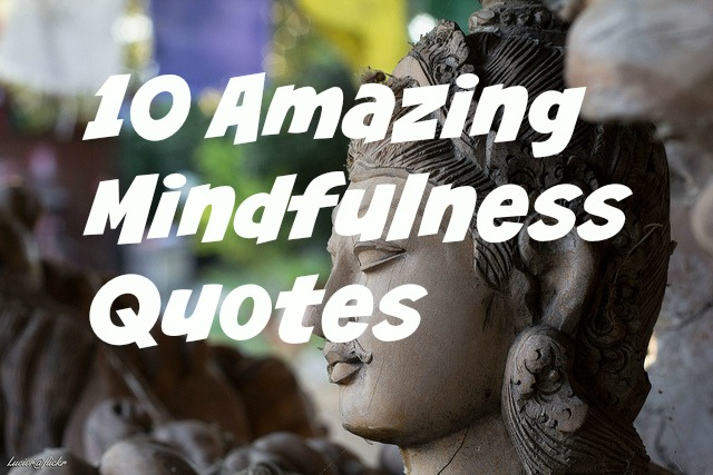 Quotes About Mindfulness Gorgeous 10 Amazing Mindfulness Quotes  About Meditation