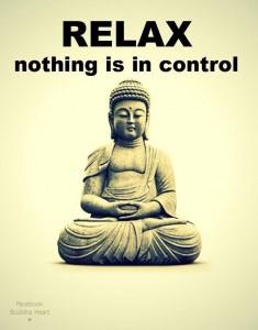 meditator's guide