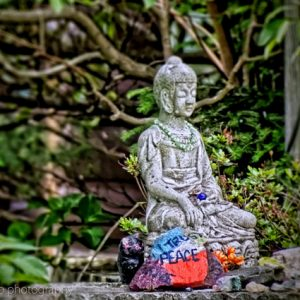 OM027: How To Manage Grief And Emotional Pain During Meditation