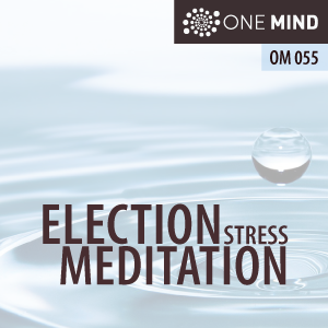 OM055: Guided Meditation For Election Stress