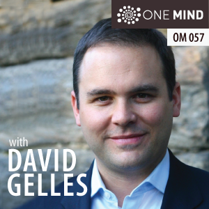 OM057: David Gelles, NYT Reporter and Author of Mindful Work