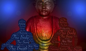 what is transmission meditation