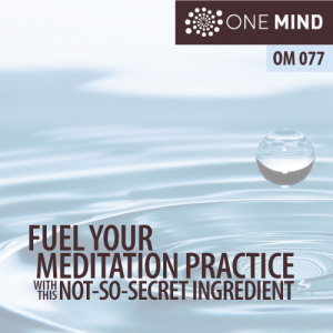 OM077: Fuel Your Meditation Practice with this Not-So-Secret Ingredient