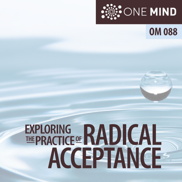 OM088 – Exploring the Practice of Radical Acceptance with Morgan Dix